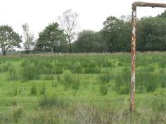 Abandoned football pitch: There are proper playing fields next to the park to the west. These rusting goalposts now have the soggy field to themselves - Copyright Nigel Davies and licensed for reuse under Creative Commons Licence.