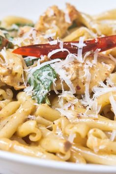 19 Skinny Pasta Recipes with Weight Watchers Smartpoints {Pictured is Four Cheese Pasta with Chicken} Weight Watchers Pasta, Plats Weight Watchers, Weight Watcher Dinners, Spicy Chicken Pasta, Chicken Pasta Recipes, Pasta Meals, Pasta Food, Ww Recipes, Cooking Recipes