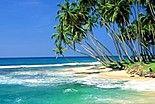 Evaneos : Sri Lanka
