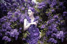 Color me Lilac - Daniela Majic