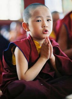 young novice Tibetan Buddhist Monk