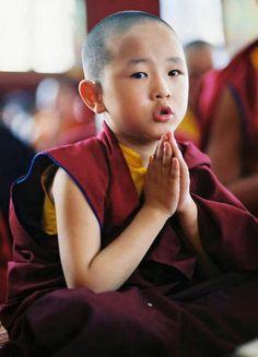 young novice Tibetan Buddhist Monk