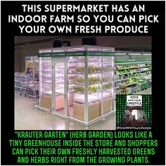 Please Share if you'd like to see an indoor vertical farm in your local grocery store! INFARM is bringing fresh greens and herbs into the supermarket with its tiny vertical farms which both grow and display the produce. While large-scale vertical urban farms may not be viable everywhere scaled-down versions of this space-efficient growing method have been shown to be a potential good choice for a green small business and the introduction of a new micro-scale offering from INFARM could bring…