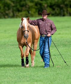 Downunder Horsemanship | Training Tip of the Week: Hard-to-catch horse tip: Halter the easiest to catch horse first.