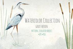 "Watercolor set of ""Grey Heron"" by Anastasia Lembrik on Creative Market"
