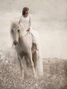 Lady and dreamy white horse in field of white flowers. Romantic pic.