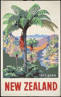Drift of into the land of Maori warriors, beautiful valleys and pristine islands with these vintage tourism posters of New Zealand. These vintage posters were designed during and New Zealand Art, New Zealand Travel, Party Vintage, Vintage Ads, Retro Poster, Vintage Travel Posters, Tree Fern, Tourism Poster, Nz Art