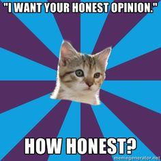 autistic kitten   Autistic Kitten - I want your honest opinion. HOW honest?