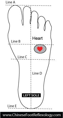 Strengthening Heart Qi for Congenital Heart Defects with Reflexology | Holly Tse