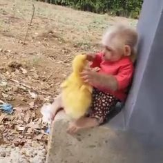 #monkey #duck #cutemonkey #babyduck #babyanimals #cuteanimals #duckvideo #monkeyvideo #animalvideos Cute Little Animals, Cute Funny Animals, Cute Cats, Animal Antics, Animal Jokes, Cute Animal Videos, Funny Animal Pictures, Funny Babies, Animals Beautiful