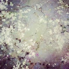 Flower Painting by artist Laurence Amélie. Lovely abstract impressionist white flowers give lots of texture. Abstract Flowers, Abstract Art, Art Flowers, White Flowers, Laurence Amelie, Famous Contemporary Artists, Art Amour, Grand Art, Love Art