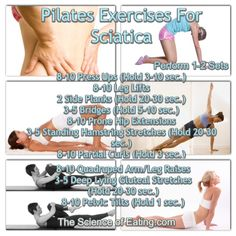 physiotherapy exercises for lower back pain