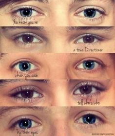 You know you're a true Directioner when you can tell who's who by their eyes.