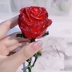 🎁A nice choice for Birthday, Anniversary and act as Daily Surprise Gift🍻To Love & Friendship. Surprise Rose Gift Box, Give Your Love A Big Surprise! gifts Women's Favorite Silver Clover Necklace Red Necklace, Necklace Types, Silver Necklaces, Gold Bracelets, Crystal Necklace, Ladies Necklace, Summer Necklace, Cute Necklace, Silver Pendant Necklace