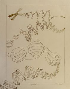 An illustration of DNA from the chromosome magnification to a single strand. Done for the application to the University of Toronto Biomedical Communications program.