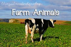 Farm Animals. Things I love about Country