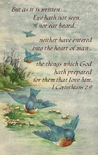 Little Birdie Blessings : Blue Birds From Heaven ~ But as it is written, Eye hath not seen, nor ear heard, neither have entered into the heart of man, the things which God hath prepared for them that love him. Images Vintage, Vintage Postcards, Vintage Cards, Vintage Ephemera, Scripture Verses, Bible Scriptures, Encouragement Scripture, Scripture Images, Funny Bird