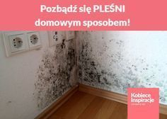 Cost Of Mold Remediation Effects Of Black Mold, Matching Paint Colors, Home Hacks, Home Improvement Projects, Interior Design Living Room, Room Interior, Cleaning Hacks, Diy And Crafts, Diy Projects