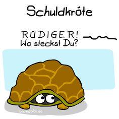Rüdiger war's!  Schuldige Schildkröte