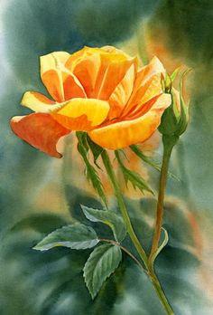 028ca2fa8bce Sharon Freeman Aquarelle Fleurs, Artiste Peintre, Rose A L aquarelle,  Aquarelles,