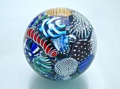 Micro+Ocean+Reef+Sphere+Paperweight by Michael+Egan: Art+Glass+Paperweight available at www.artfulhome.com