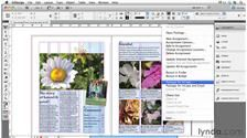 Watch the Online Video Course Collaborative Workflows with InDesign and InCopy