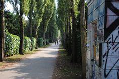 Assistens Cemetary, Copenhagen. Hans Christian Andersen, Soren Kierkegaard, and Niels Boehr are all buried here.