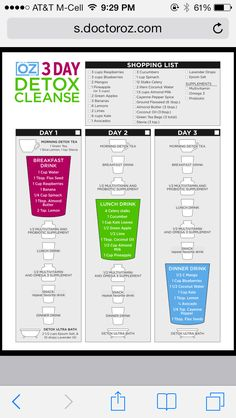 Dr. Oz 3-day detox smoothie plan... Kind nervous about starting this...(Jess)