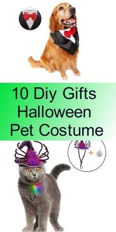 10 Diy Gifts Halloween Pet Costume Pet Halloween Costumes, Pet Costumes, Diy Tutorial, Diy Gifts, Pets, Animal Costumes, Diy Presents, Animals And Pets, Handmade Gifts