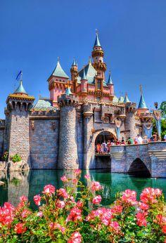 Disney Gallery - ToursDepartingDaily