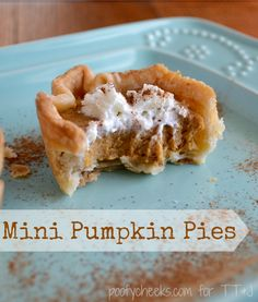 Mini Pumpkin Pies! Such a yummy bite-sized treat for fall!