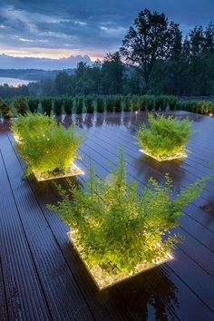 How is your backyard garden lighting going? Good weather is coming sooner than later, so you need to consider what you will do to make your backyard garden merrier. One of the crucial parts of garden design is… Continue Reading → Led Outdoor Landscape Lighting, Backyard Lighting, Linear Lighting, Lighting Ideas, Lighting Design, Led Light Design, Outdoor Pictures, Backyard Projects, Backyard Ideas