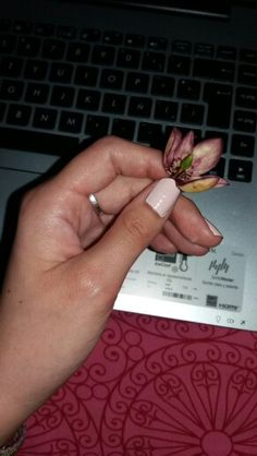 Magnolia abierta <3