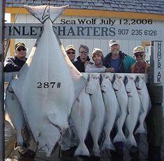 Halibut Fishing Charters in Homer Alaska Pacific Halibut, Best Fishing, Fishing Stuff, Fishing Knots, Going Fishing, Halibut Fishing, Homer Alaska, Kenai Peninsula, Alaska Adventures