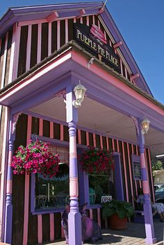 The Purple Pie Place -Custer, South Dakota Had the best chicken salad sandwich ever and the pie was Yummy. South Dakota Vacation, South Dakota State, Places Ive Been, Places To Go, Blackberry Pie, Happy Trails, Salad Sandwich, A Whole New World, Florida Travel