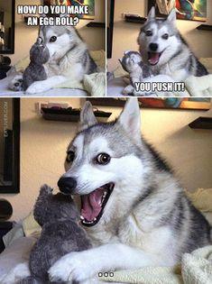 The Best Collection Of Husky Puns - Jokes - Funny memes - - The Best Collection Of Husky Puns The post The Best Collection Of Husky Puns appeared first on Gag Dad. Funny Dog Jokes, Puns Jokes, Corny Jokes, Stupid Funny Memes, Funny Relatable Memes, Dad Jokes, Puns Hilarious, Jokes Kids, Tgif Funny