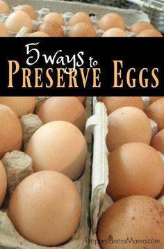 5 Ways to preserve eggs for food storage | PreparednessMama