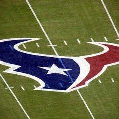 Houston Texan football
