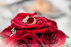 http://celebrationsoftampabay.com/indian-wedding-photographers/