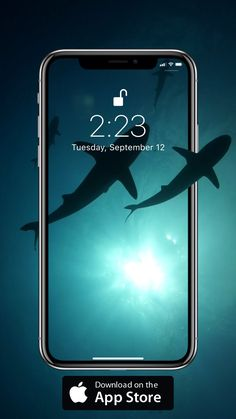 Underwater wallpaper Underwater wallpaper Lucio William luciowilliammlw Favoritos Cool sharks live wallpaper for your iPhone XS from Everpix Live wallart wallpaper livewallpapers nbsp hellip backgrounds videos Shark Wallpaper Iphone, Underwater Wallpaper, Apple Wallpaper Iphone, Phone Screen Wallpaper, Galaxy Wallpaper, Wallpaper Backgrounds, Iphone Backgrounds, Wallpapers Android, Mobile Wallpaper Android