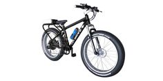 Wild Goose Ebike | Classic and Vintage ebikes | Electric Bycicles | Daymak