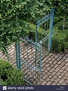 Blue wrought iron gates at garden entrance with cobbled path and box Stock Photo, Royalty Free Image: 111370231 - Alamy