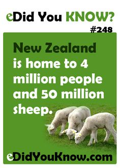 New Zealand is home to 4 million people and 50 million sheep. http://edidyouknow.com/did-you-know-248/