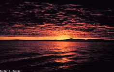 A Bering Sea sunset from the Bureau of Commercial Fisheries Ship BROWN BEAR.