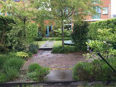 Lekker volgroeide tuin van ruim 10 jaar oud