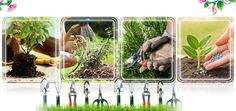 Simple #Gardening Tips & Tools – A Guide For Beginners...