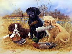 Another great dog print for sale--MAKING MISCHIEF by James Killen. It's hard not to fall in love with these three sporting dog puppies--a springer spaniel, a golden retriever, and a black lab. They ne