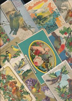 Nice Lot of 20 Holiday Greetings Postcards all with *  BIRDS~ birds Vintage-a678