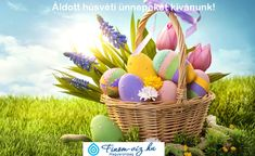 Easter wallpaper by _Lorelai_ - 82 - Free on ZEDGE™ Frühling Wallpaper, Spring Wallpaper, Easter Wishes, Easter Gift, Easter Card, Happy Easter Wallpaper, Easter Egg Basket, Easter Stickers, Easter Pictures