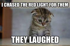 Sad Kitten needs a hug!